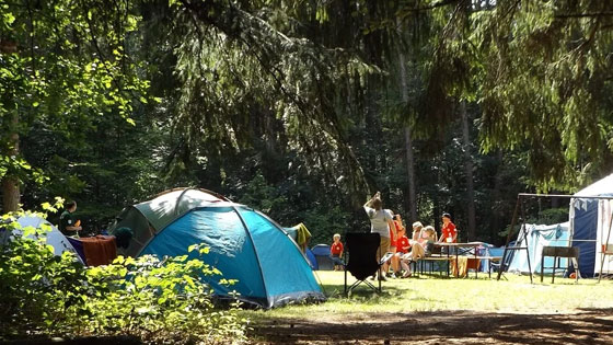 Post Image Some Top Campsites in Illinois Whittington Woods Campground - Some Top Campsites in Illinois